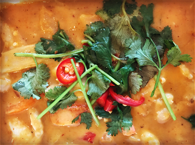 Foto Kipfilet met Thaise rode curry